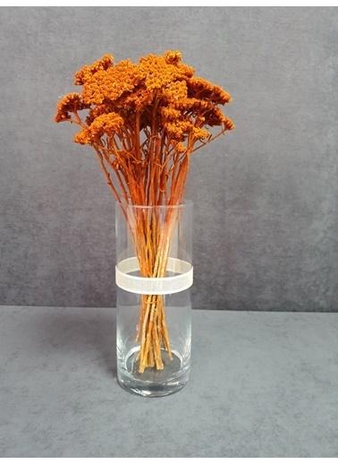 Kuru Çiçek Deposu Kuru Çiçek Şemsiye Otu Demeti 45 Cm Bordo Oranj